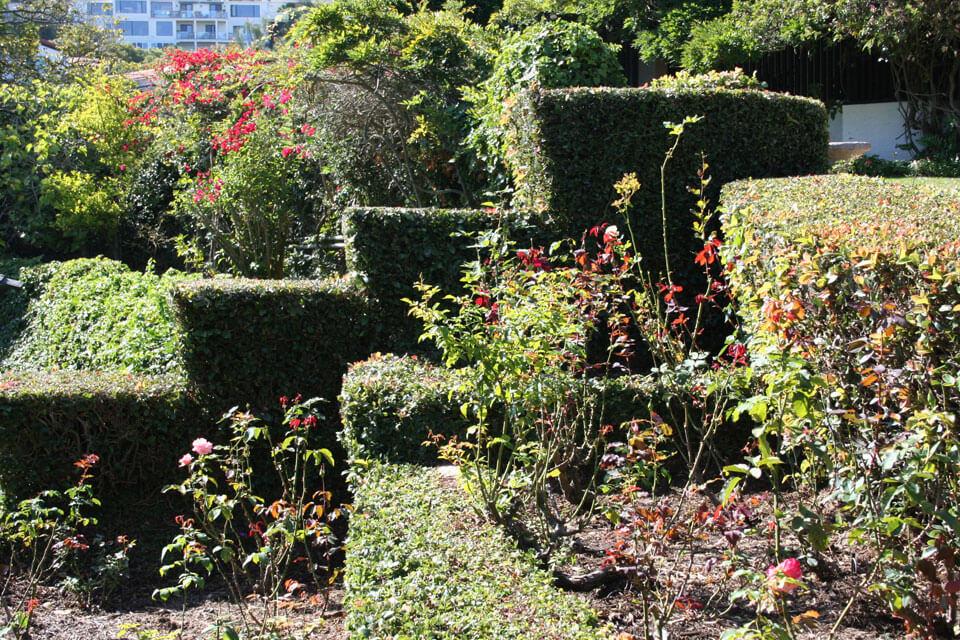 la-jolla-landscape-garden