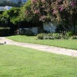 lajolla-landscape-lawn