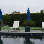 lajolla-landscape-residential-pool