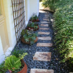 lajolla-landscape-sideyard