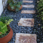 lajolla-landscape-sideyard-close-up