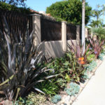 lajolla-landscape-sideyard-close-up-2