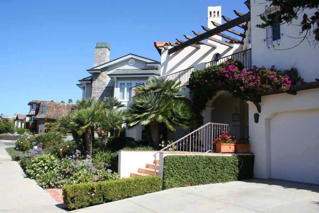 La Jolla Landscape Maintenance