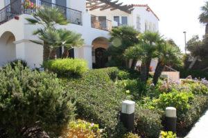 la-jolla-landscape-home-maintenance