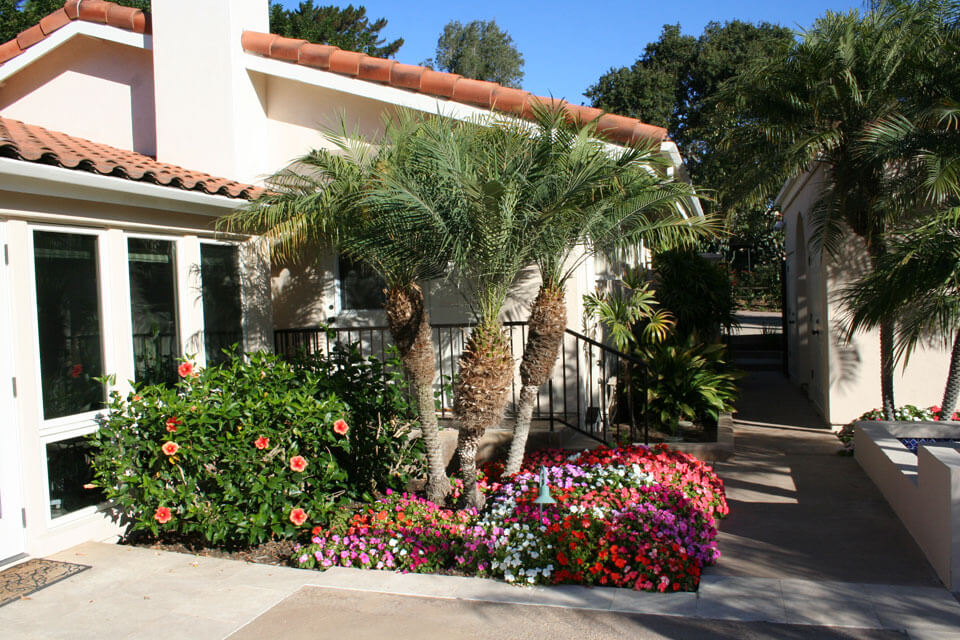 san-diego-home-tree-Services-landscaper